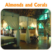 Almonds and Corals - Tucan Limo Services