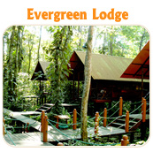 Evergreen Lodge - TUCAN LIMO SERVICES