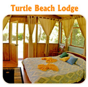 TURTLE BEACH LODGE  - TUCAN LIMO SERVICES