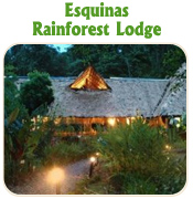 Esquinas Rainforest Lodge- TUCAN LIMO SERVICES
