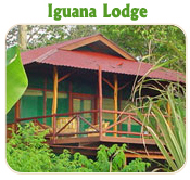 IGUANA LODGE - TUCAN LIMO SERVICES