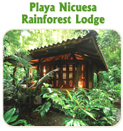 PLAYA NICUESA RAINFOREST LODGE - TUCAN LIMO SERVICES
