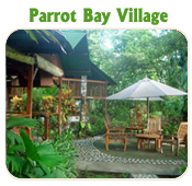PARROT BAY VILLAGE- TUCAN LIMO SERVICES